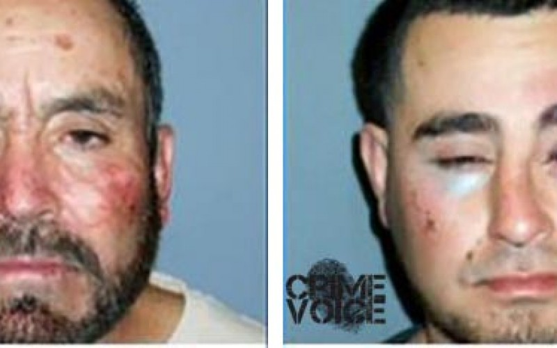 Father & Son Brawl with Cops…and Lose