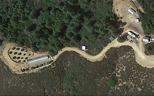 The property on Adobe Creek shows a greenhouse and other plants growing in a secluded area, often a tell-tale sign.
