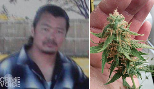 Nirut Honey Gowing and an image of Marijuana in his hand, both photos from his Facebook page.