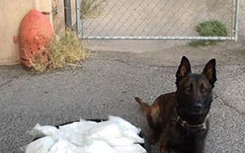Tico Finds Meth on Pico Avenue