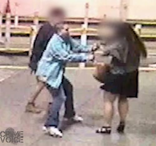 Another shot from the surveillance video shows the purse snatcher struggling with one of the women. The victim's faces were blurred by police before releasing the video.