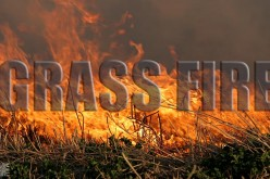 Santa Rosa arsonist just can't stop