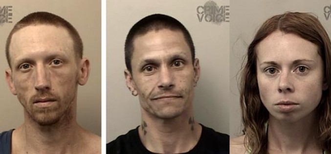 Three People Arrested in El Dorado Hills for Drugs and Stolen Mail