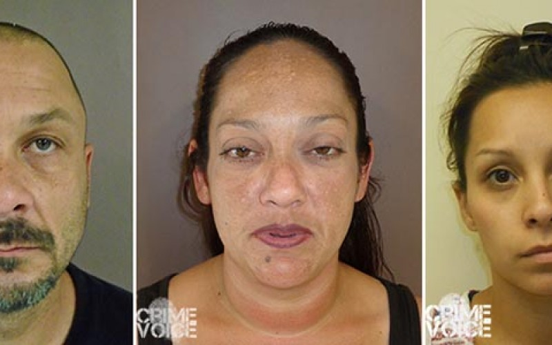 Police Arrest Four in Search Warrant After Investigation