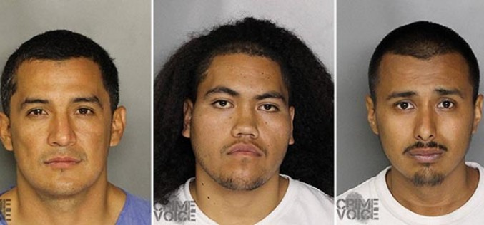 Three Arrested for Home Invasion and Vehicle Theft
