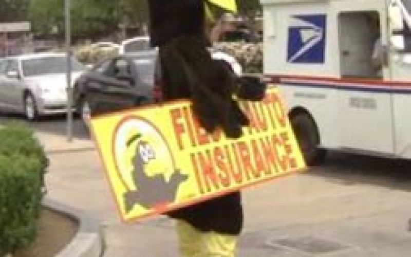 Suspect Tried to Steal Phone from Bird Mascot on Street