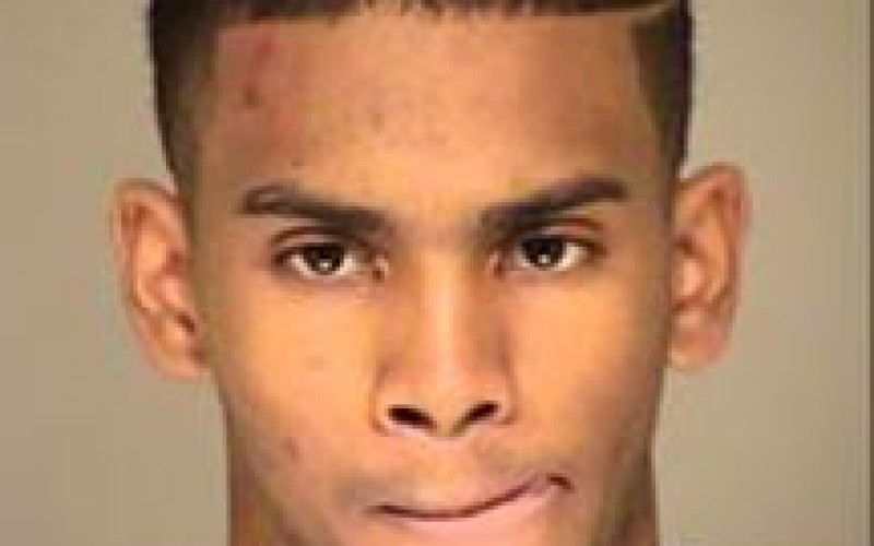 High School Hoop Star Busted for Auto Burglary
