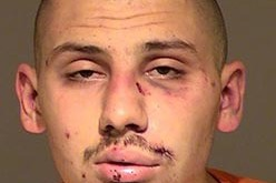 "Theft Victim ""Detains"" Suspect with Fists"