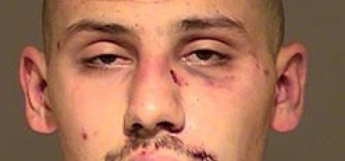 """Theft Victim """"Detains"""" Suspect with Fists"""