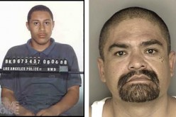 CHP Officer Nabs Los Angeles Murder Suspect