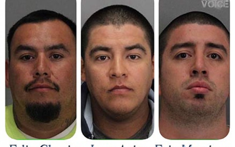 Four arrested for 49ers game felony assault