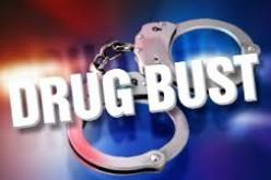 Deputies Arrest 20 in Wasco Sweep