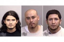 Mendocino Marijuana Field Murder