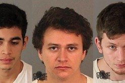 BB Gun Vandals Arrested for Approximately $35,000 Worth of Damage