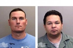 Mendocino Deputies Arrest 3 in Redwood Valley for Domestic Violence