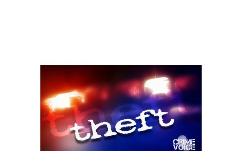 Man on probation arrested for felony theft