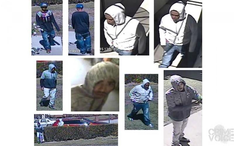 Brazen Daylight Burglars Still At Large in San Jose