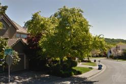 Vigilant UPS driver brings break in Santa Rosa burglary investigation