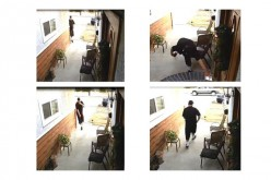Thief Steals Package on Doorstep, Caught by Camera