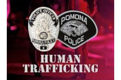 Six Arrested for Prostitution