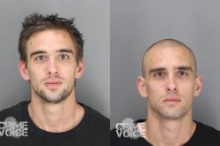 Shaved Head Doesn't Fool Cops