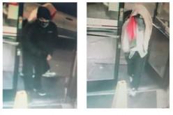 Vandalism, robbery, DUI abound in Santa Rosa