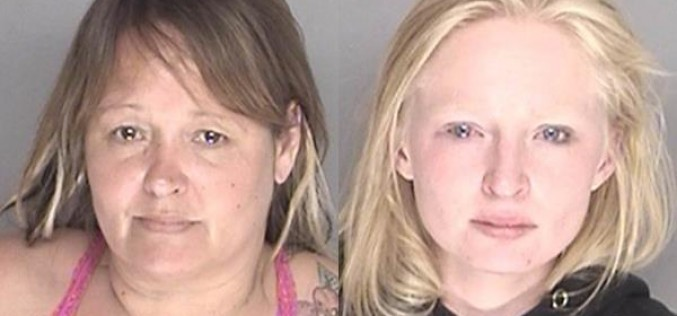 Smoking on Sidewalk Leads to Arrests for I.D. Theft