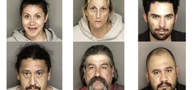 Series of Raids Net 6 Arrests