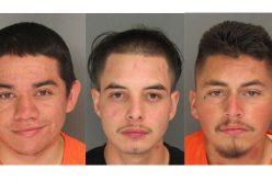 Vehicle Violation Leads to Probation Arrest