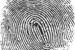Latent Prints Nail 2014 Burglar