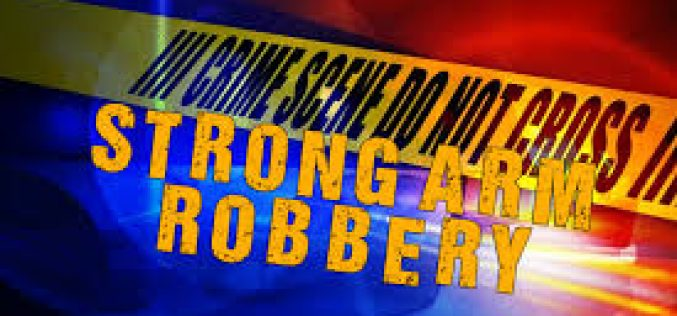Strong Arm Robbery Reported in Sunnyvale