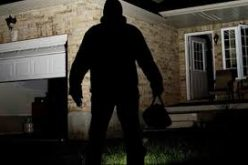 Daytime Burglar Busted