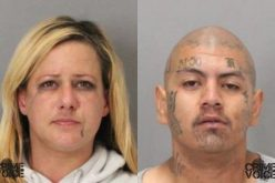 Milpitas Police Arrest Four Car Theft Suspects