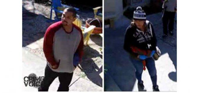 Palo Alto Police seek brazen day time burglars