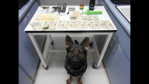 Atlas poses with items confiscated from Condito's vehicle