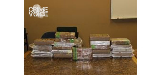 $6.8 Million Drug Bust