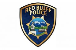 Local Transient Arrested After Residential Burglary