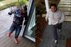 Palo Alto Police seek suspects in two burglaries