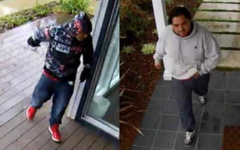 Palo Alto Police seek suspects in two burglaries