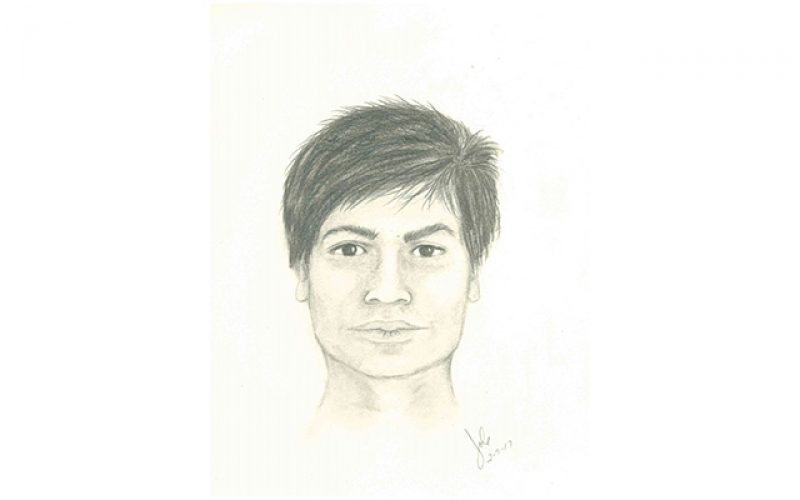 EL DORADO COUNTY: Authorities Release Composite Sketch of Sexual Assault Suspect