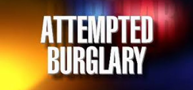 Palo Alto Police arrest multiple teen suspects in attempted burglary