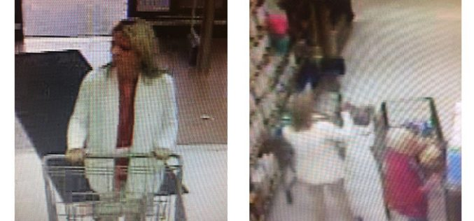 Purse Theft Suspect Identified, Turns Herself In