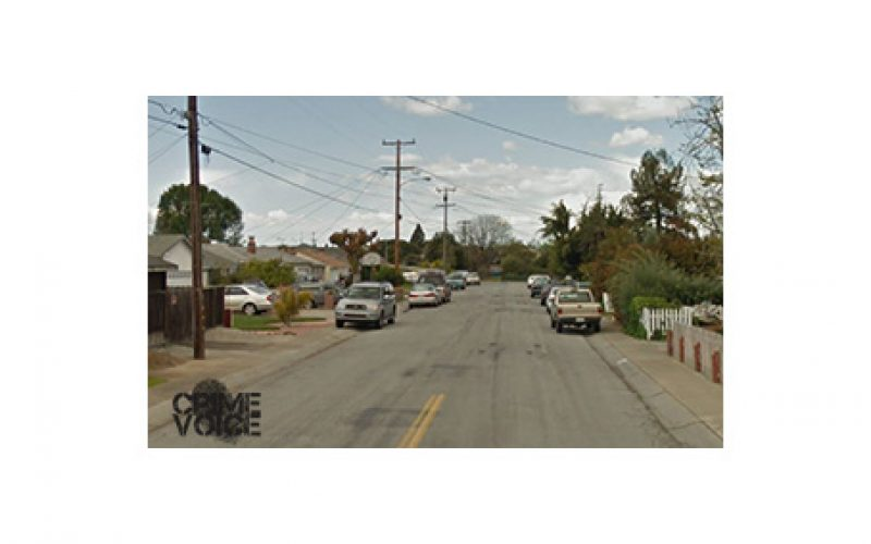 Struggling Suspect Drops Gun after Botching Auto Burglary