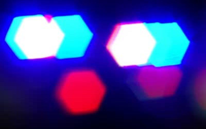 Shasta County Deputies Find Assault Victim Tied to Tree