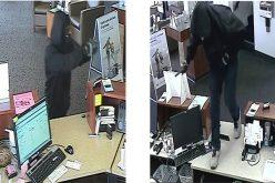 "Police on the Hunt for ""Smash n' Grab"" Robber"