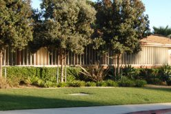 Hit-and-run Causes School Lockdown