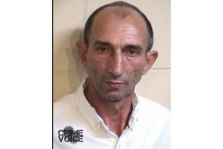 Beehive Thief Arrested