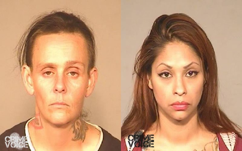 FPD Reports Similar Stories of Auto Theft Arrests