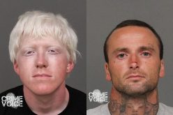 Social Media used to Identify, Arrest Two Theft Suspects