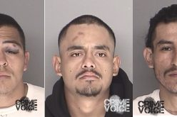 Four Arrested in Robbery and Stabbing